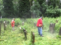 Cutting the vegetation in oswiecim Jewish cemetery