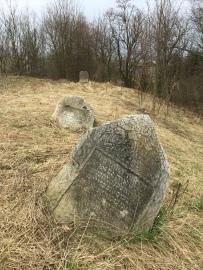 Biskupice Jewish cemetery, Lubelski region (Photo credit: Caroline Sturdy Colls)