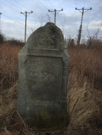 Krasnystaw Jewish cemetery, Lubelski region (Photo credit: Caroline Sturdy Colls)