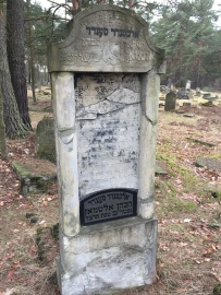 Otwock Jewish cemetery, Mazovia region (Photo credit: Caroline Sturdy Colls)